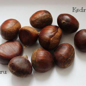 каштан съедобный семена